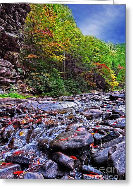 Babbling Brook Greeting Card by Dawn Gari