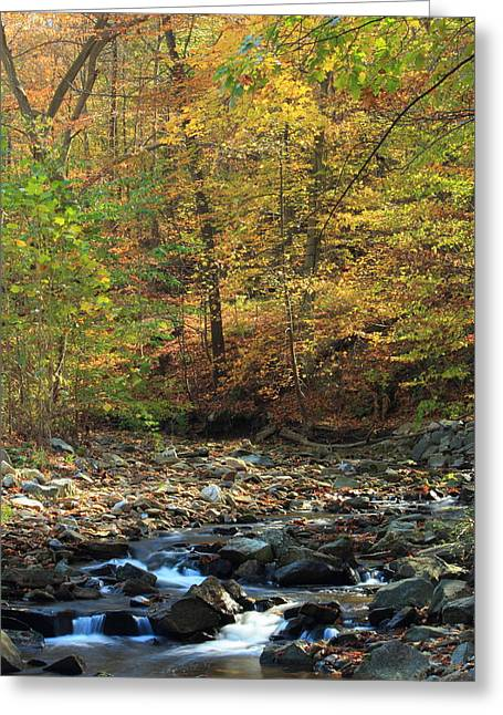 Babbling Greeting Cards - Babbling Brook in Autumn Greeting Card by Stephen Hobbs