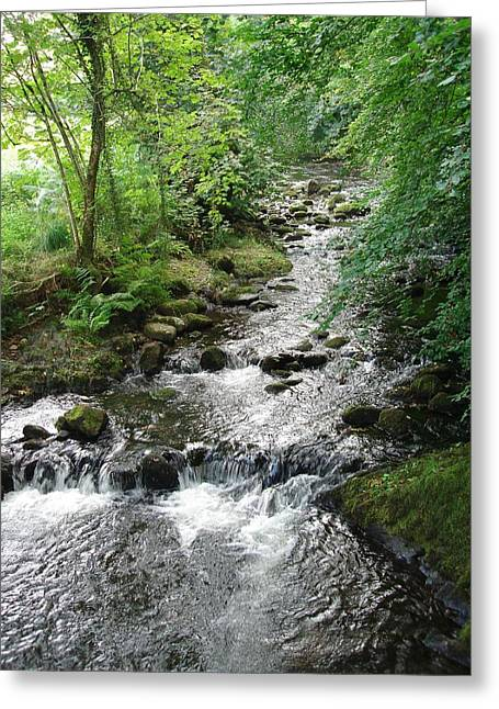 Brook Pyrography Greeting Cards - Babbling Brook Greeting Card by Philip Francis