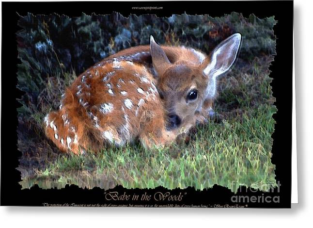 Fawn Mixed Media Greeting Cards - Babe in the Woods Greeting Card by Skye Ryan-Evans