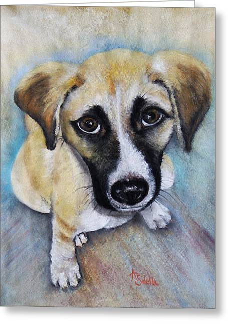 Puppies Paintings Greeting Cards - Baby Addie Greeting Card by Annamarie Sidella-Felts