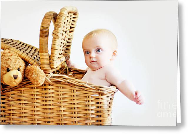 Hamper Greeting Cards - Baby and Ted in Hamper Greeting Card by Rpics Rpics