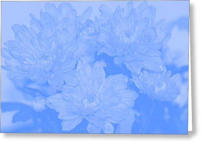Baby Blue 2 Greeting Card by Carol Lynch