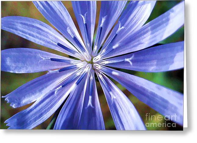 Stamen Digital Art Greeting Cards - Baby Blue Greeting Card by Molly McPherson