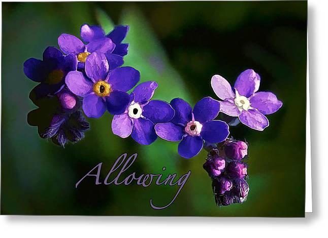 Affirmation Digital Art Greeting Cards - Baby Blues - Allowing Greeting Card by Bill Caldwell -        ABeautifulSky Photography