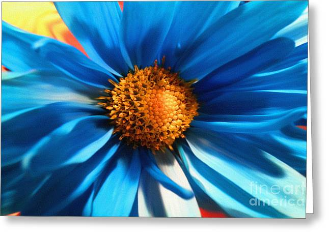 Aster Digital Art Greeting Cards - Baby Blues Greeting Card by Diane E Berry
