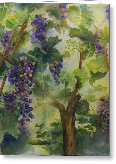 Vineyard Paintings Greeting Cards - Baby Cabernets in Sunlight Greeting Card by Maria Hunt