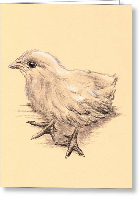 Baby Bird Drawings Greeting Cards - Baby Chicken Greeting Card by MM Anderson