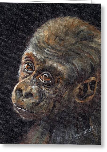 Ape. Great Ape Greeting Cards - Baby Gorilla Greeting Card by David Stribbling