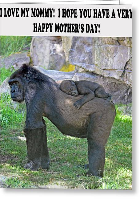 Love The Animal Greeting Cards - Baby Gorilla sleeping on Mommys Back Mothers Day Version Greeting Card by Jim Fitzpatrick