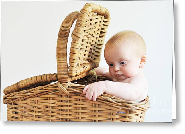 Hamper Greeting Cards - Baby in Hamper Greeting Card by Rpics Rpics