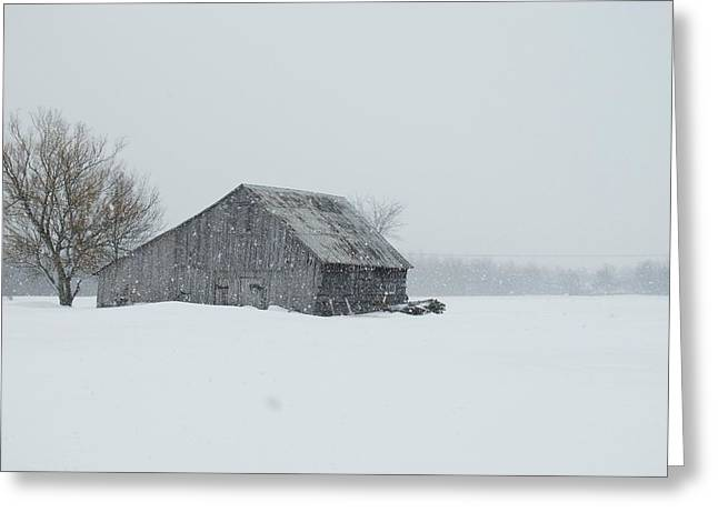 Wintery Barn Greeting Cards - Baby It Is Cold Outside Greeting Card by Mary Ellen  Mueller Legault