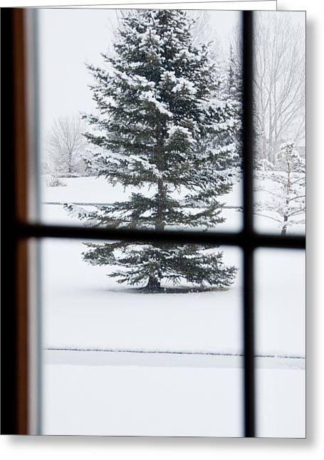 Trees Greeting Cards - Baby Its Cold Outside Greeting Card by Dana Kern