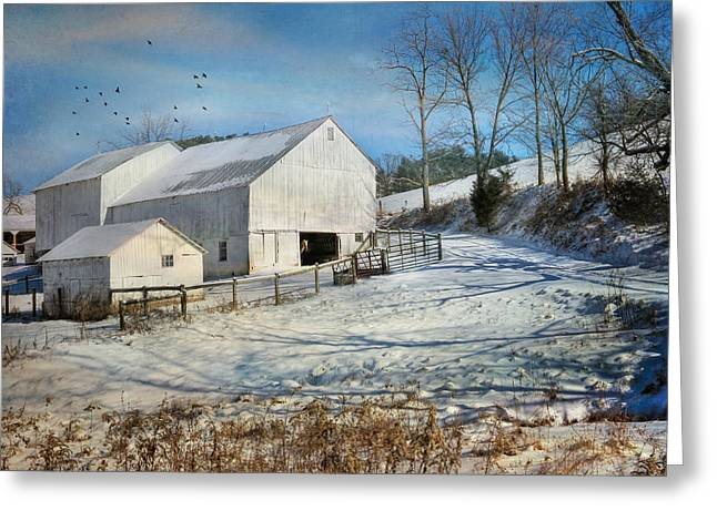 Barn Digital Greeting Cards - Baby Its Cold Outside Greeting Card by Lori Deiter