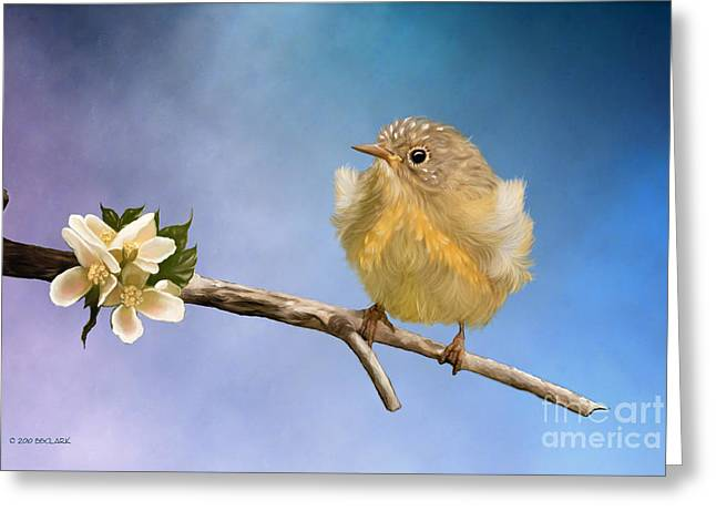 Baby Bird Greeting Cards - Baby O Baby Greeting Card by Reflective Moment Photography And Digital Art Images