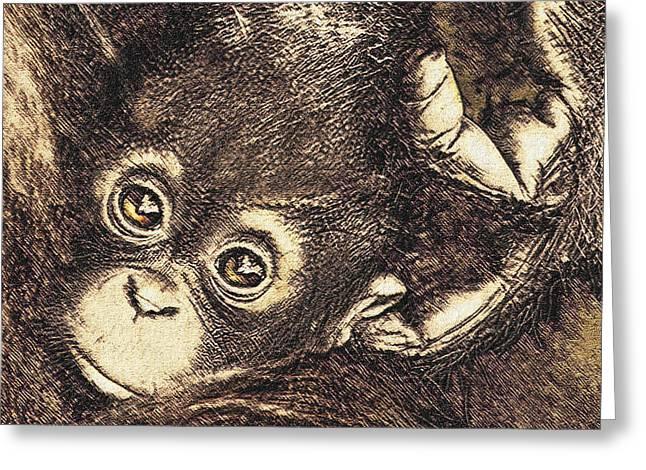 Baby Orangutan Greeting Card by Jane Schnetlage
