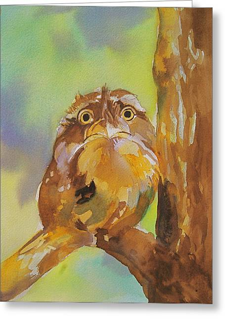 Baby Owl Greeting Card by Reveille Kennedy
