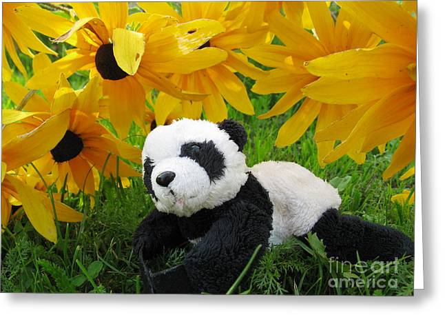 Ausra Paulauskaite Greeting Cards - Baby panda under the golden sky Greeting Card by Ausra Paulauskaite