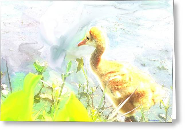 White River Scene Mixed Media Greeting Cards - Baby Sandhill Crane Greeting Card by Lenore Senior and Sharon Burger