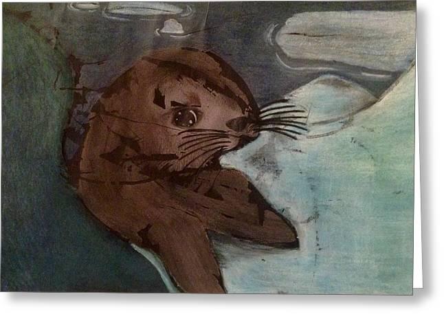 Seal Drawings Greeting Cards - Baby Seal Greeting Card by Eleni Pessemier