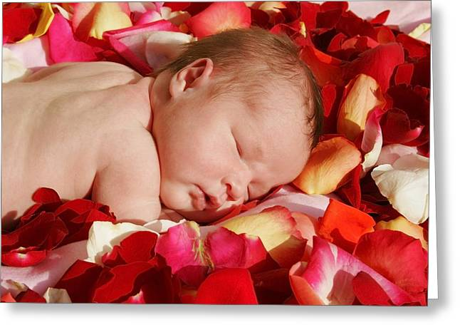 Innocence Greeting Cards - Baby Sleeping On A Bed Of Rose Petals Greeting Card by Christine Mariner