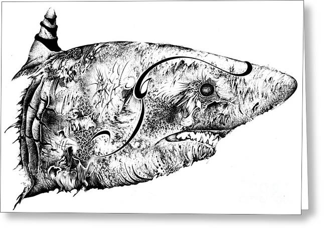 White Shark Drawings Greeting Cards - Baby Whit Distorted Greeting Card by Penelope Fedor