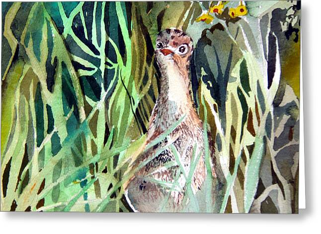 Baby Bird Drawings Greeting Cards - Baby Wild Turkey Greeting Card by Mindy Newman