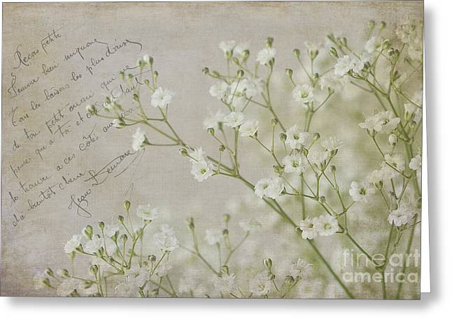 Babys Breaths Greeting Cards - Babys Breath 984 Greeting Card by Cindi Ressler