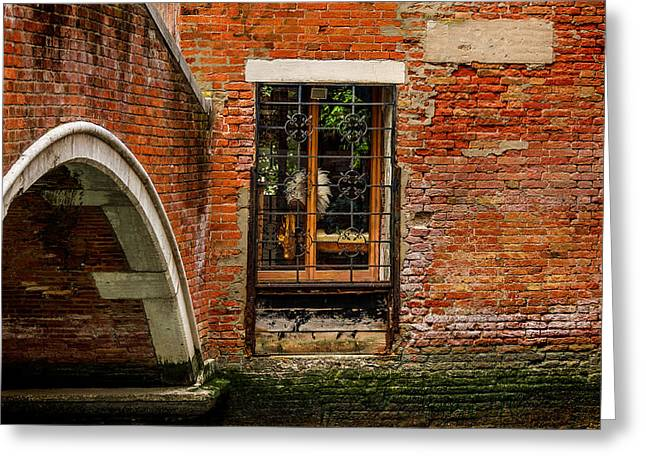 Back Alley Greeting Cards - Back Alley Venice Italy Greeting Card by Xavier Cardell