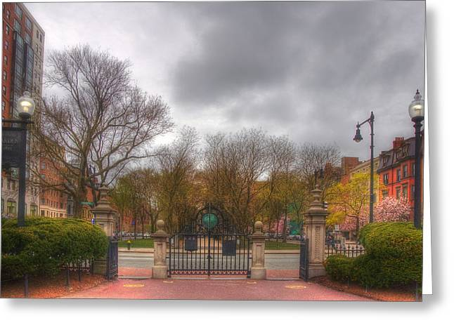 Boston Garden Greeting Cards - Back Bay through the Public Garden - Boston Greeting Card by Joann Vitali