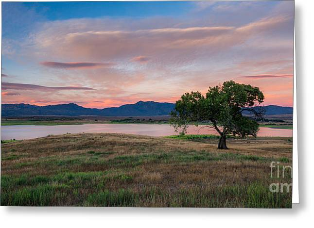 Back Country Greeting Cards - Back Country Dusk Greeting Card by Alexander Kunz