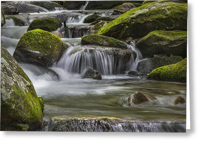 Back Country Stream Greeting Card by Jon Glaser