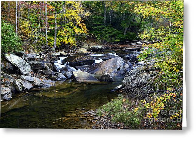 West Fork Greeting Cards - Back Fork of Elk River Waterfall Greeting Card by Thomas R Fletcher