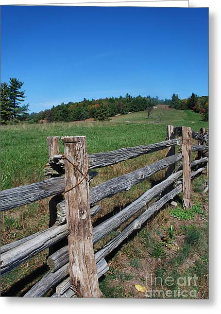 Split Rail Fence Greeting Cards - Back Forty Greeting Card by Skip Willits