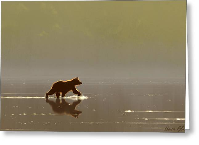 Back Lit Grizzly Greeting Card by Aaron Blaise