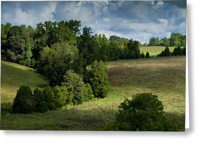 Back Pasture Greeting Card by Nathaniel Kidd