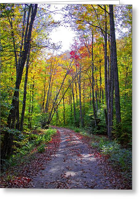 Gravel Road Greeting Cards - Back Road in the Adirondacks Greeting Card by David Patterson