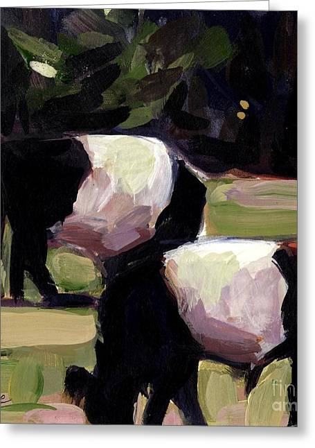 Belted Galloway Greeting Cards - Back to Back Greeting Card by Molly Poole
