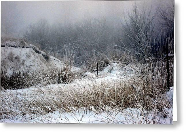 Kathy Bassett Greeting Cards - Back Woods Winter Greeting Card by Kathy Bassett