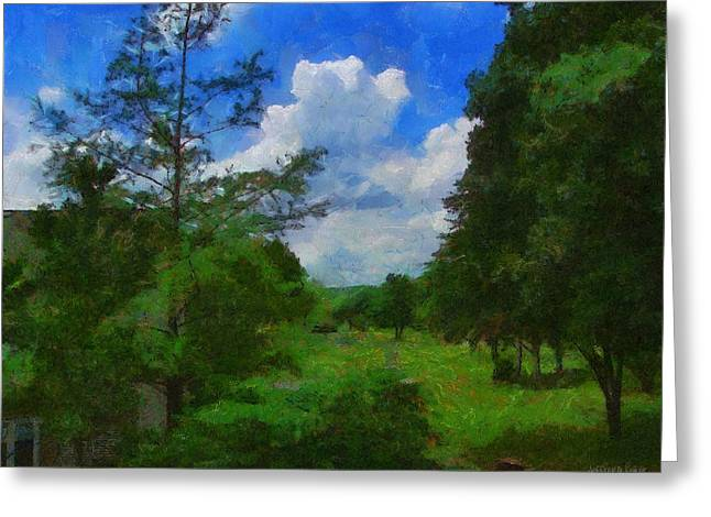 Yards Greeting Cards - Back Yard View Greeting Card by Jeff Kolker