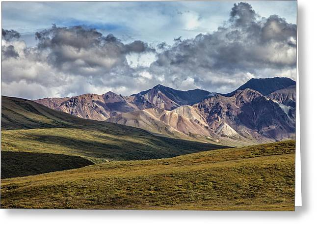 Denali Greeting Cards - Backcountry Denali Greeting Card by Rick Berk