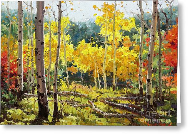 Fall Aspens Greeting Cards - Backlit Aspen Grove  Greeting Card by Gary Kim