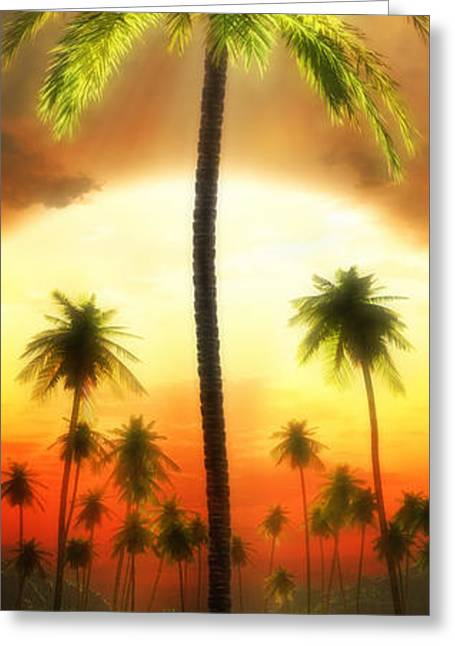 Ocean Art Photography Greeting Cards - Backlit Palm Greeting Card by John Robichaud