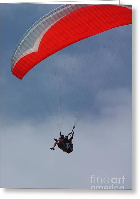 Park Scene Greeting Cards - Backlit Paragliders from Below - Torrey Pines Greeting Card by Anna Lisa Yoder