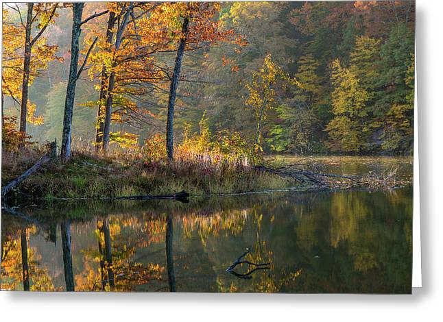 Backlit Trees On Lake Ogle In Autumn Greeting Card by Chuck Haney