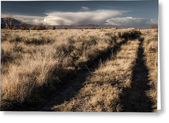 Road Travel Greeting Cards - Backroad Greeting Card by Cat Connor