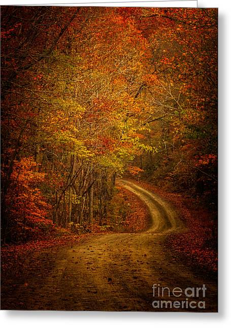 Richland Creek Greeting Cards - Backroad Color Greeting Card by Larry McMahon