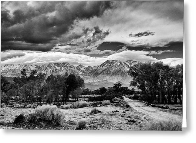 California Hills Greeting Cards - Backroads of Bishop Greeting Card by Cat Connor