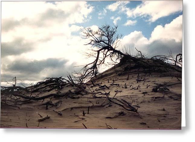 Storm Clouds Cape Cod Greeting Cards - Backside Dune Greeting Card by Loren McNamara