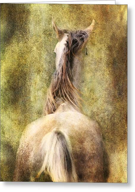 Collie Mixed Media Greeting Cards - Backside Greeting Card by Sabine Peters